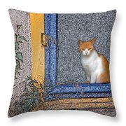 Taos Cat Throw Pillow