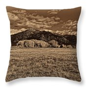 Taos Mountain In Platinum  Throw Pillow