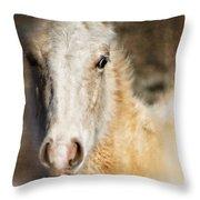 Taos Pony X Throw Pillow