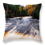Taquamenon River Throw Pillow