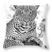 Tarangire Leopard Throw Pillow