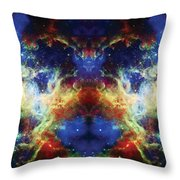 Tarantula Reflection 2 Throw Pillow by Jennifer Rondinelli Reilly - Fine Art Photography