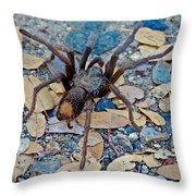 Tarantula Spider In Park Sierra Near Coarsegold-california Throw Pillow