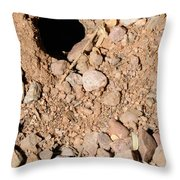 Tarantula Takes Scorpion 5 Of 5 Throw Pillow