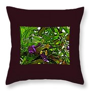 Tarbush In Santa Elena Canyon In Big Bend National Park-texas  Throw Pillow