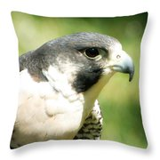 Target Acquired Throw Pillow