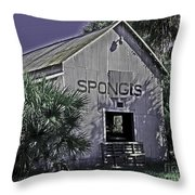 Tarpon Springs Warehouse II Throw Pillow