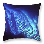 Tarpum Bay Bahamas  Throw Pillow by Adam Romanowicz