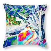Tartaric Acid Crystals In Polarized Light Throw Pillow