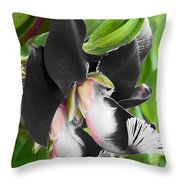 Tasmanian Bedevilled  Throw Pillow