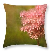 Taste Of Summer Throw Pillow by Beve Brown-Clark Photography