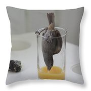 Tasty Juice Throw Pillow