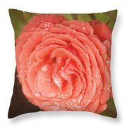 Tattered Rose Throw Pillow