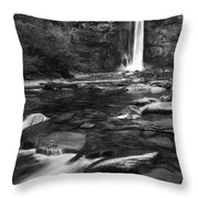 Taughannock Black And White Throw Pillow