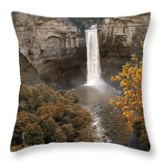 Taughannock Falls Park Throw Pillow