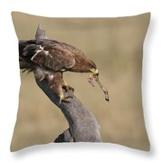 Tawny Eagle With Prey Throw Pillow