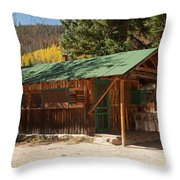 Taxidermyon The Holzwarth Historic Site Throw Pillow
