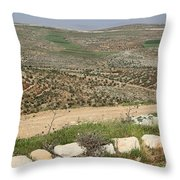 Taybeh Landscape Throw Pillow