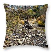 Taylor Creek Lake Tahoe Throw Pillow