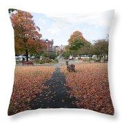 Taylor Park St Albans Vermont Throw Pillow