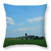 Taylors Farm Throw Pillow