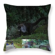 Tayra Costa Rica Animals Zoo Habitat Indigenous Population Mixing With Travellers Enjoying And Being Throw Pillow