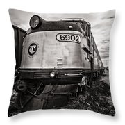 Tc 6902 Throw Pillow by CJ Schmit