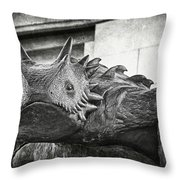 Tcu Horned Frog 2014 Throw Pillow