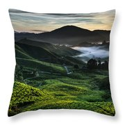 Tea Plantation At Dawn Throw Pillow