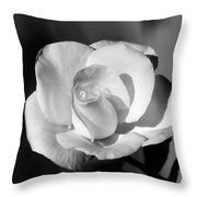 Tea Rose 01 - Infrared Throw Pillow