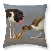 Teaching The Young Throw Pillow