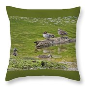 Teal Family Gathering Throw Pillow