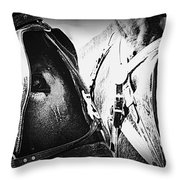 Team Work - Mules 2225-012-bw Throw Pillow