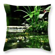 Tears And Mirth Throw Pillow