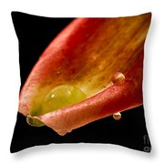 Tears On A Lilly Throw Pillow