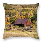 Technicolor Throw Pillow