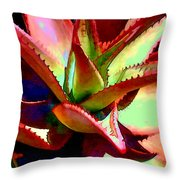 Technicolored Agave Succulent Throw Pillow