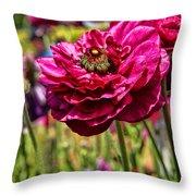Tecolote Ranunculus Flowers By Diana Sainz Throw Pillow