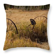 Tedder On The Holzwarth Historic Site Throw Pillow