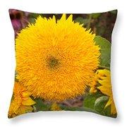 Teddy Bear Sunflower 2 Throw Pillow