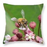 Teetering On Milkweed Throw Pillow