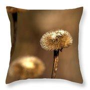 Telekia Speciosa Throw Pillow