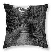 Telluride Stream Throw Pillow