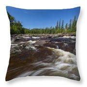 Temperance River 1 Throw Pillow