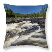 Temperance River 4 Throw Pillow