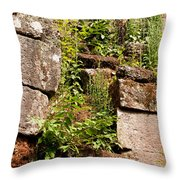 Temple Ruins 05 Throw Pillow