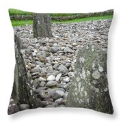 Temple Wood Close-up Throw Pillow