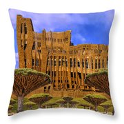Temporal Anomaly Throw Pillow