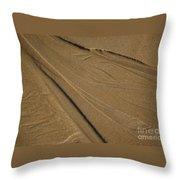 Temporay Illusions Throw Pillow