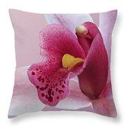Temptation - Pink Cymbidium Orchid Throw Pillow